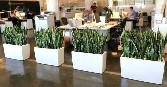 Thiết kế web nội thất văn phòng hợp phong thủy