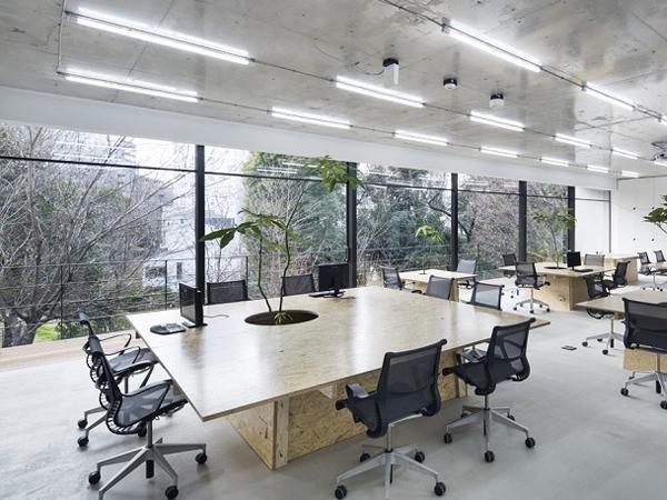 thiết văn phòng không gian mở