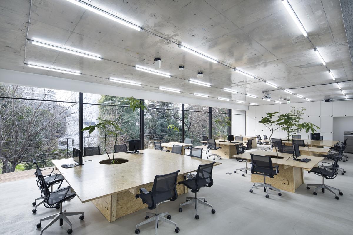 Văn phòng hiện đại thân thiện với thiên nhiên